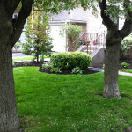 Weekly lawn mowing services from Gardenzilla in Midtown & North Toronto