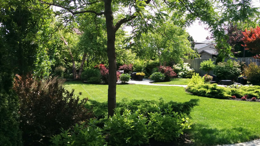 Garden Maintenance Services In Glen Park