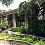 Garden Maintenance Services in North Toronto