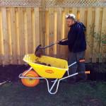 Garden planting services from Gardenzilla in midtown & north Toronto.