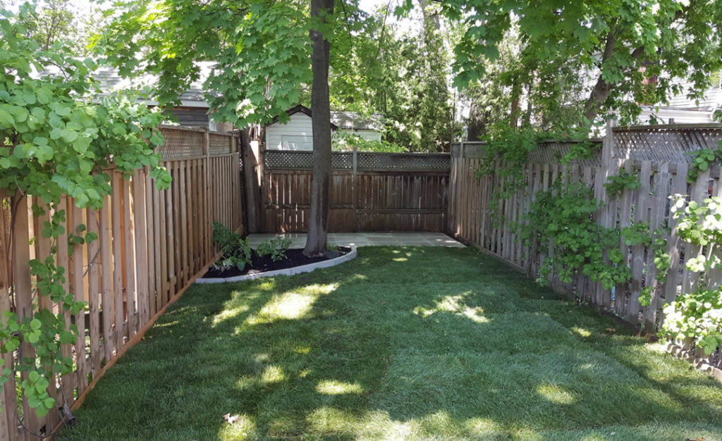 New lawn and patio by Gardenzilla