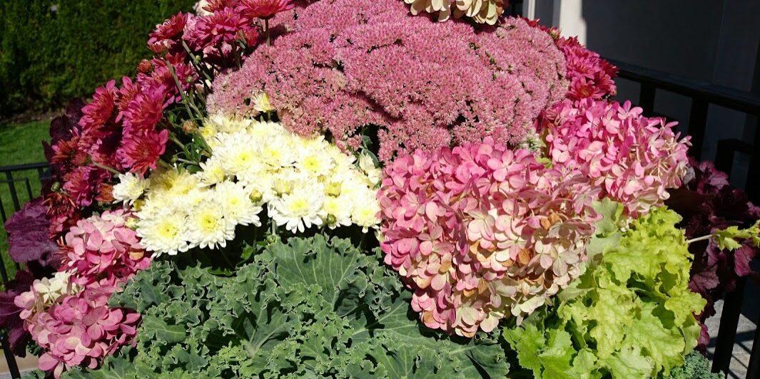 A fall planter by Gardenzilla's Deborah Vivas