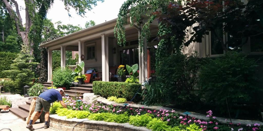 Garden Maintenance Services in North Toronto