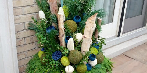 A winter planter featuring birch by Deborah Vivas of Gardenzilla