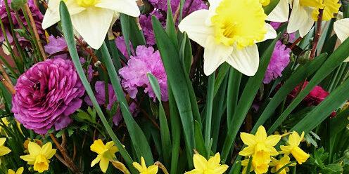 A spring planter by Deborah Vivas of Gardenzilla